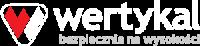 Wertykal logo